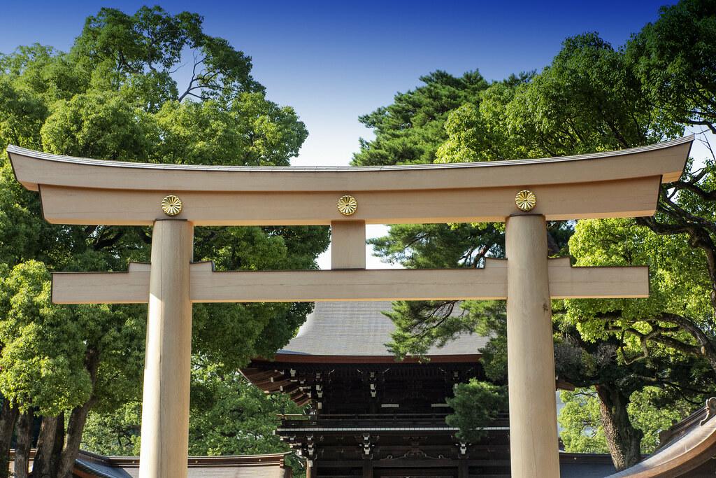 Meiji Shrine Torii, Tokyo
