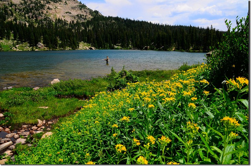 Upper Forest Lake (8)