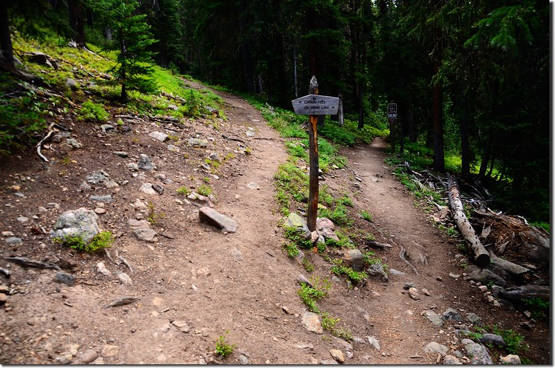 Caribou Pass Trail & Columbine Lake Trail junction