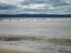 Dee Estuary and Flintshire