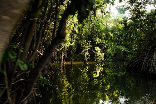 Río Arriba (29)