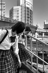 Tokyo en verticales