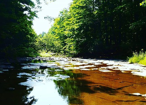 Not a lot of water now.... #hunterscreekpark #wny #eastaurora #nature #hiking #stream #runningwater