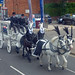 Hearse carriage and horses - Pershore Road, Selly Park