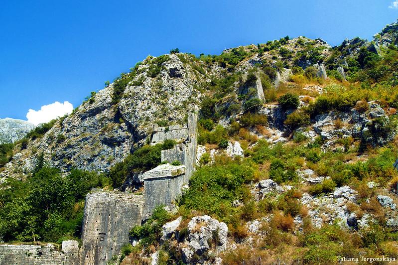 Крепостные стены Котора, поднимающиеся от Южных ворот