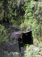 Madeira 2014 - 8.Tag, Ribeira da Janela, Canico de Baixo