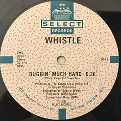 WHISTLE:(NOTHING SERIOUS)JUST BUGGIN'(LABEL SIDE-B)