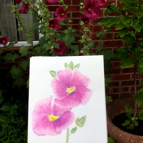 watercolour painting of hollyhocks