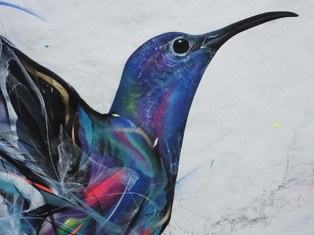 UPFEST: L7matrix birds