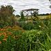 Country Garden - Lower Crawshaw