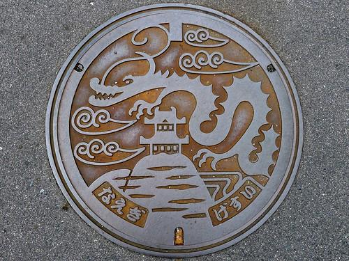 Naegi Nakatsugawa Gifu, manhole cover (岐阜県中津川市苗木のマンホール)
