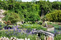 046  - 20180414 Japanese Tea Garden San Antonio IMG_8775 HDR