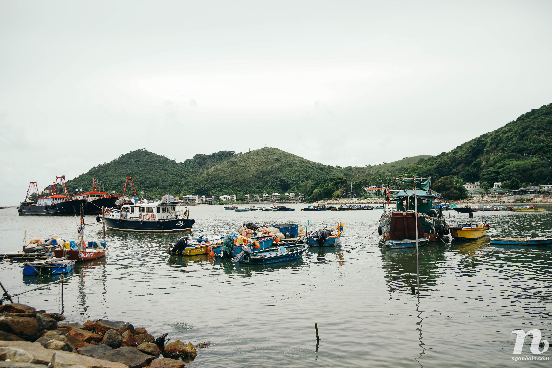 4 ngày ở Hong Kong (4) - Đến đảo Lantau thăm Tian Tan Buddha và làng chài Tai O