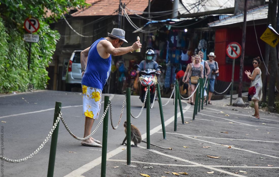 Bali-Ubud-(88)