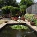 Malcolm's garden