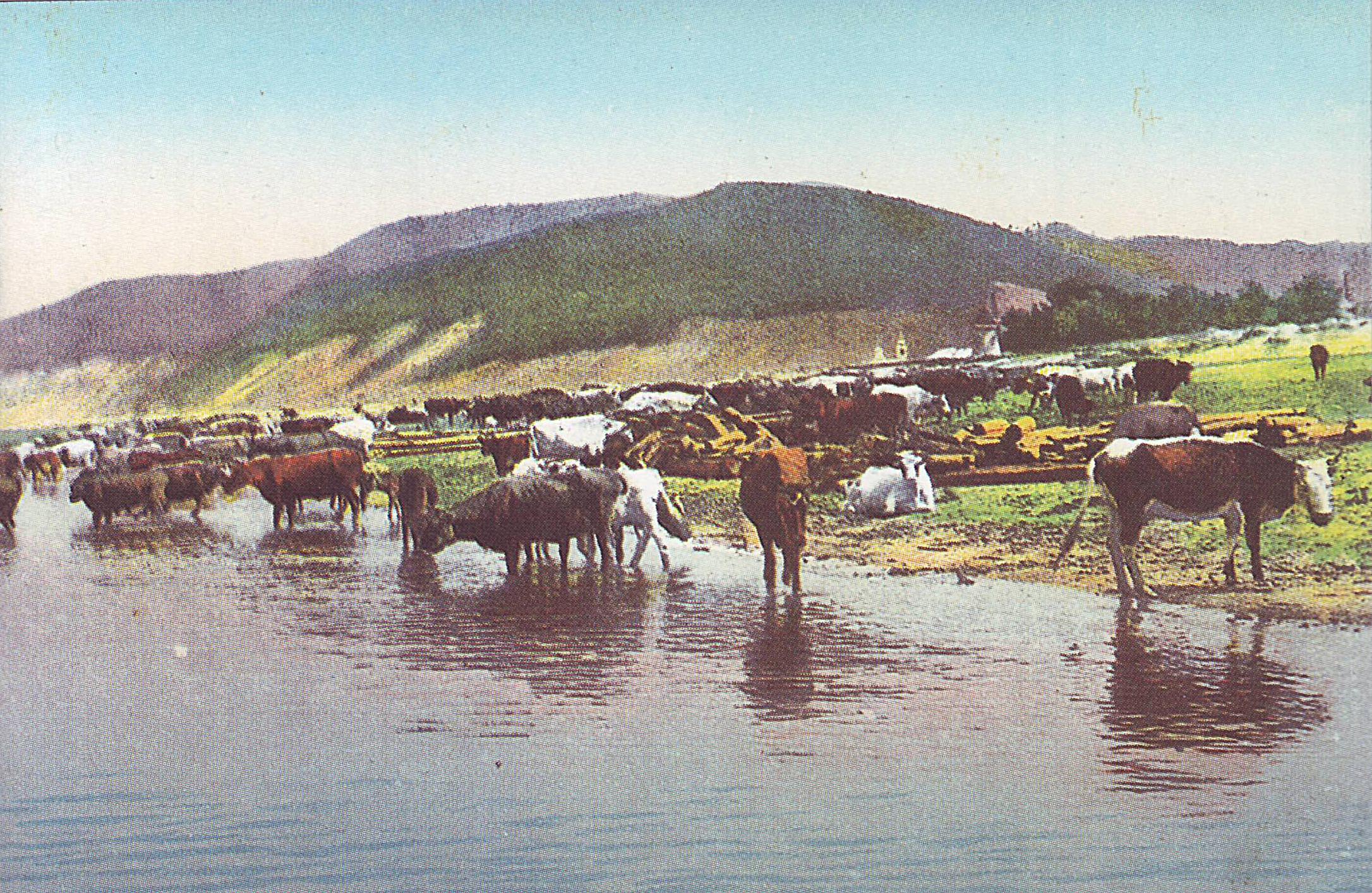 Ширяево, вид в сторону горы Монастырской