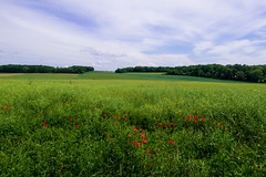 IMG_3652 - Photo of Chavençon