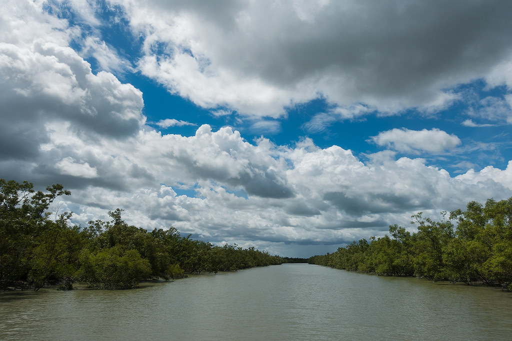 Sunderbans tiger reserve sky in the monsoon