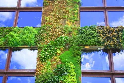 le mur vegetal du mus e du quai branly le coin jardin. Black Bedroom Furniture Sets. Home Design Ideas