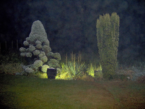 The Hotel Garden Image