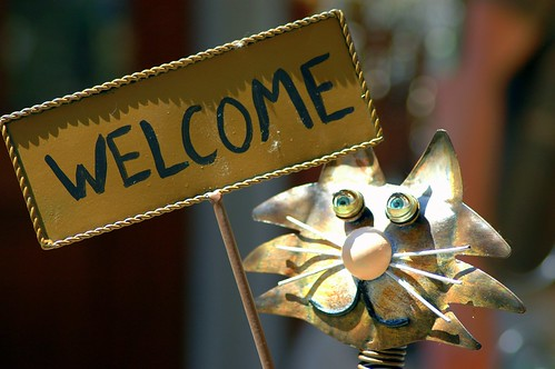 Welcome | by storem