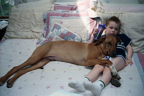 preteen beastiality | Flickr - Photo Sharing!