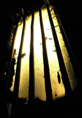 light luz night dof stripes lineas