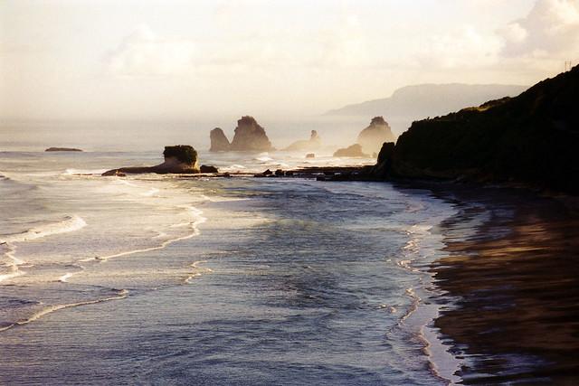 Morning mist, west coast, New Zealand
