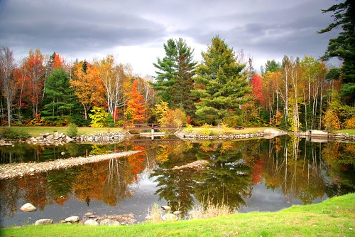 autumn fall maine fallfoliage ponds fallseason thegoldenmermaid thegardenofzen bestofautumn