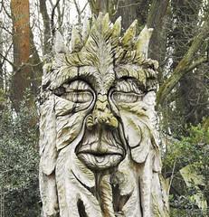 Thornley Woods - Visitor Centre Artwork