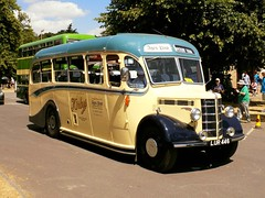 Bus Rallies.