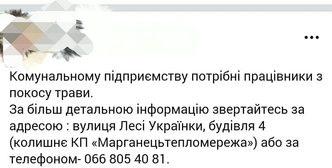38838040_251803925454467_7082365401400606720_n