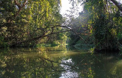 Río Arriba (70)