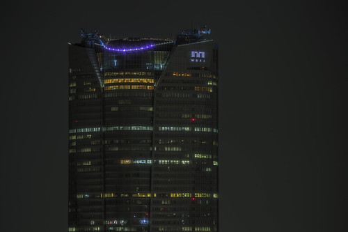 Tokyo 4463