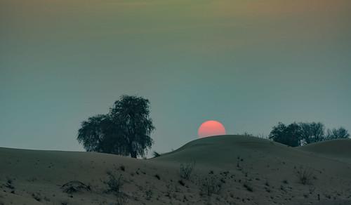 природа nature пейзаж landscape dmilokt пустыня desert nikon d750