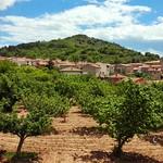 Ayuntamiento de Aguas Cándidas