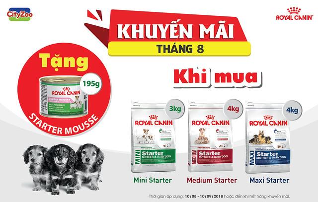 chuong-trinh-khuyen-mai-royal-canin-thang-8-2018