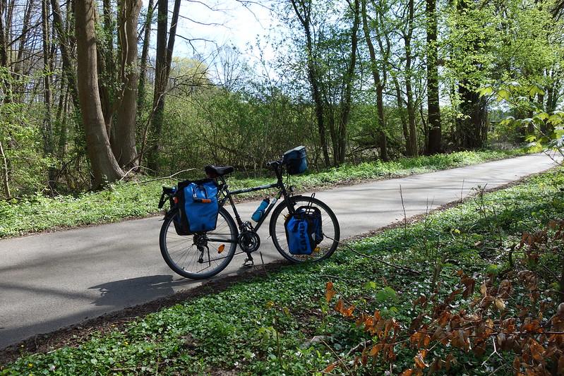 Im Wald bei Zechow