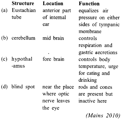 NEET AIPMT Biology Chapter Wise Solutions - Neural Control and Coordination - 16