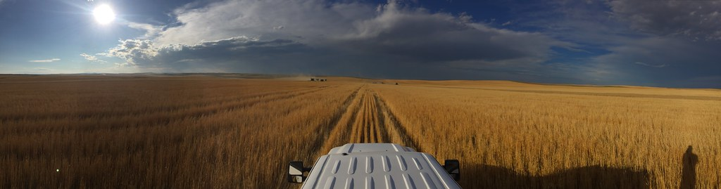High Plains Harvesting 2018 (Ryan)