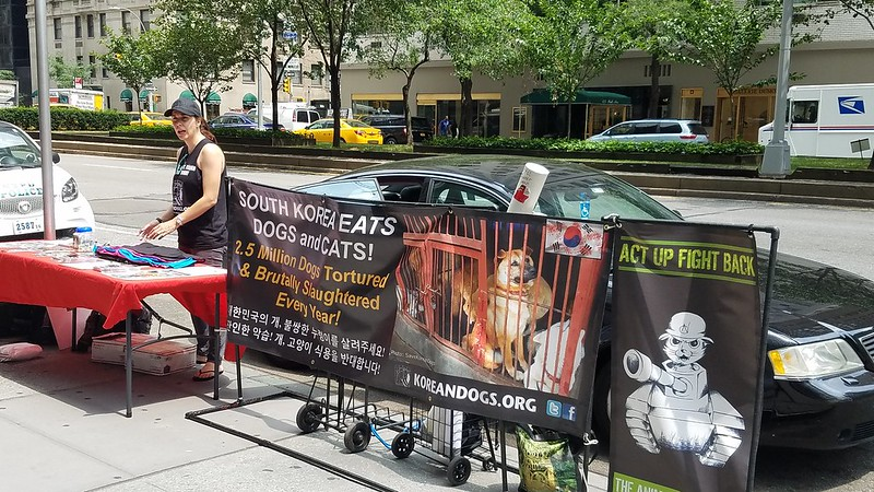 New York, South Korean Consulate General, 'Boknal' Demonstration for the South Korean Dogs and Cats (Day 1) – July 17, 2018 Organized by The Animals' Battalion
