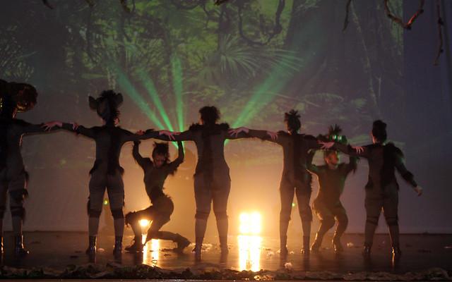 EUPHORIA DANCE-HAKUNA MATATA