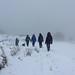 005-20180120_Chinley district-Peak District-Derbyshire-descending from Cracken Edge (Chinley Churn)-L-R Dave Willdig, Adrian & Adrienne Richards, Anna Willdig, Julia Kaye