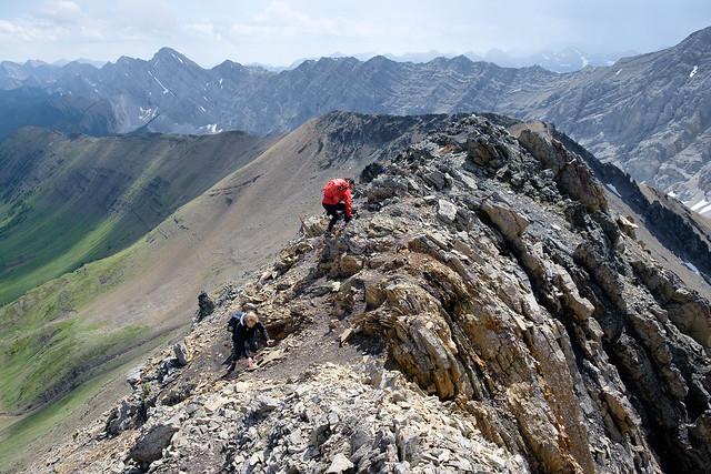 Scrambles - Grizzly Ridge-16