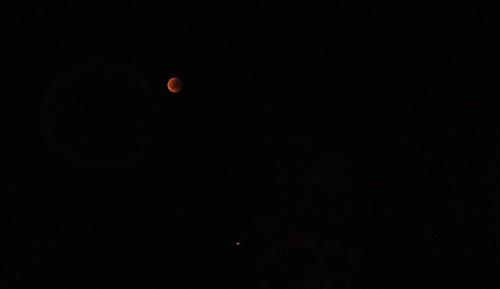 Blood moon!