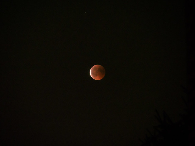 Photo:Red dot By Riccardo Palazzani - Italy