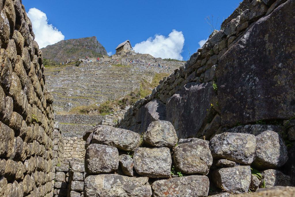 Machu Picchu-05501