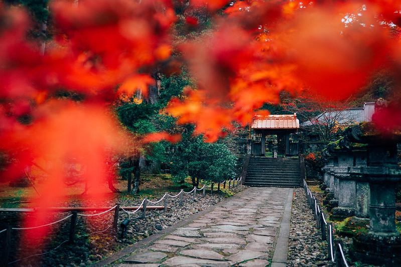 日光|Nikko