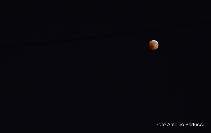 """3fcb5fc4e0 Tutti con il naso all'insù, ieri sera, per ammirare la spettacolare """"Luna di  Sangue""""."""