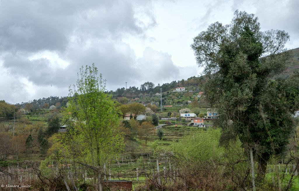 2018.- Ecovia do Vez (Sistelo-Arcos) (384)